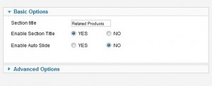 Related Products Slider For VM