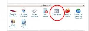 Cron jobs setup using cpanel