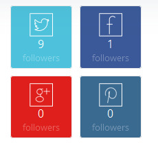 social media followers count