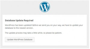 WordPress update with FTP or Cpanel