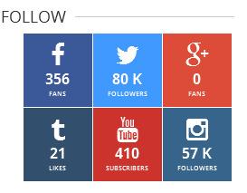 Instgram Youtube Tumblr followers using PHP